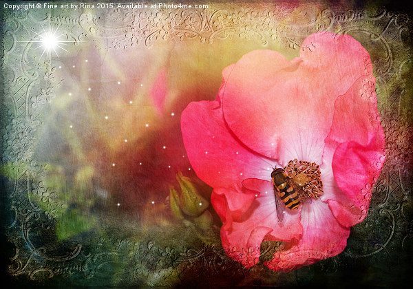 Nature Canvas print by Fine art by Rina