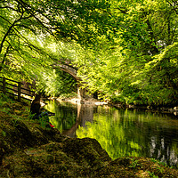Buy canvas prints of Holne Bridge Dartmoor by Maggie Mccall