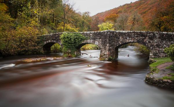 Fingle Bridge, Dartmoor, Devon. Canvas print by Maggie Mccall