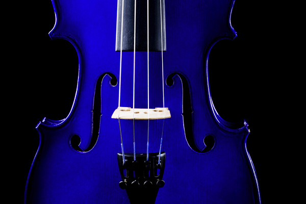 Blue Violin Closeup Canvas Print by Maggie Mccall