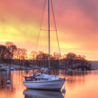 Buy canvas prints of Morning Glory by John Kay