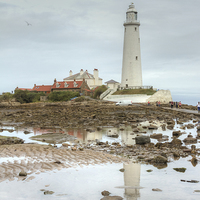 Buy canvas prints of  St Mary's lighthouse by John Kay