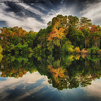 Buy canvas prints of Reflections by Zoe Ferrie