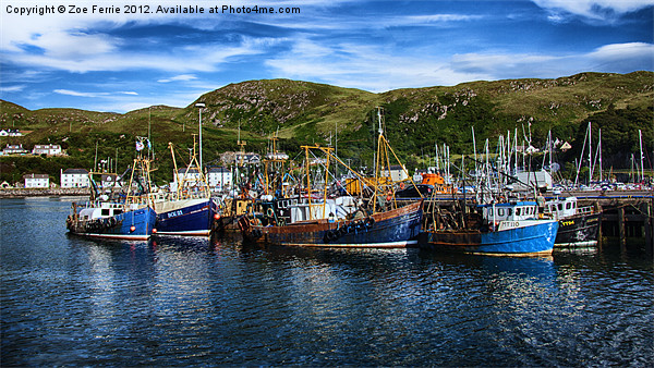 Mallaig Harbour in Scotland Canvas print by Zoe Ferrie