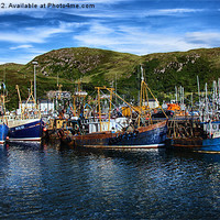 Buy canvas prints of Mallaig Harbour in Scotland by Zoe Ferrie