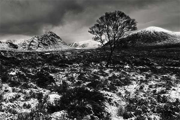 Rannoch moor Canvas Print by David Smith