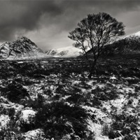 Buy canvas prints of Rannoch moor by David Smith