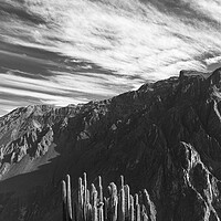 Buy canvas prints of Colca canyon in the Andes, Peru by Phil Crean