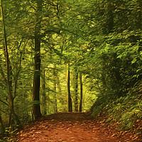 Buy canvas prints of Artistic Walk through the woods by Jim Jones
