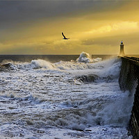 Buy canvas prints of Stormy weather at Tynemouth by Jim Jones