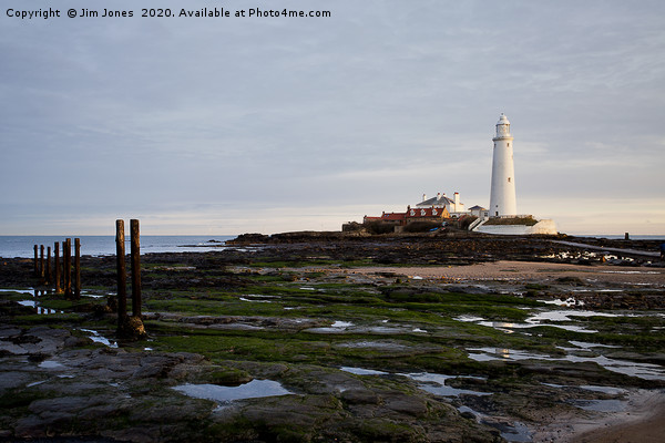 St Mary's Island and Lighthouse Canvas Print by Jim Jones