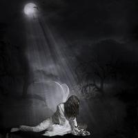 Buy canvas prints of  Fallen from Grace by Kim Slater