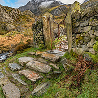 Buy canvas prints of Decorative Iron Gate  by Adrian Evans