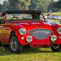 Buy canvas prints of Austin Healey 100 by Adrian Evans