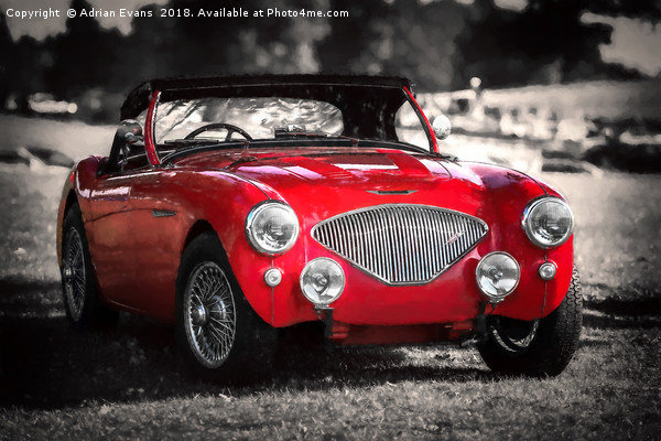 Austin Healey 100 Canvas print by Adrian Evans