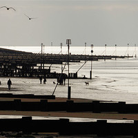 Buy canvas prints of A day trip to Hunstanton by Gary Pearson