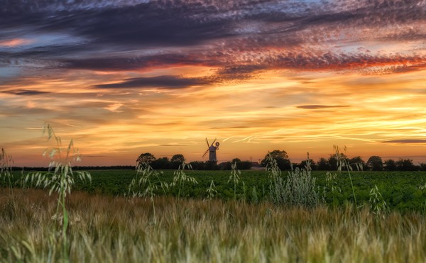 Sunset over Bircham windmill in Norfolk  Canvas print by Gary Pearson
