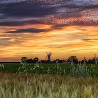 Buy canvas prints of Sunset over Bircham windmill in Norfolk  by Gary Pearson