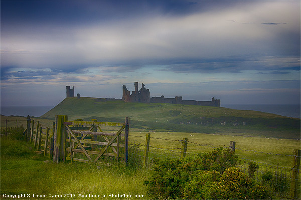 The Road To Dunstanburgh Canvas print by Trevor Camp