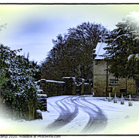 Buy canvas prints of Winter - St Ives Estate by Trevor Camp