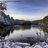 Buy canvas prints of Coppice Pond Snow - 08 by Trevor Camp