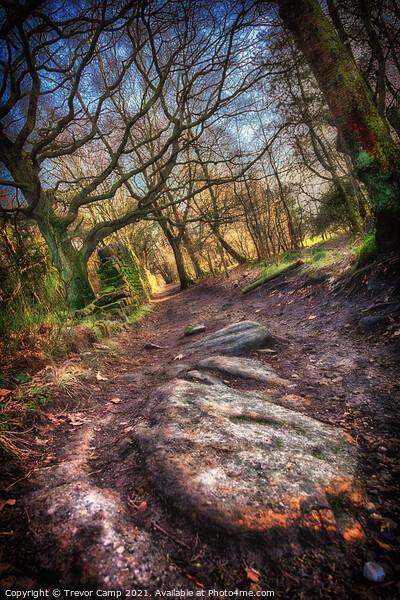A Rocky Path Print by Trevor Camp