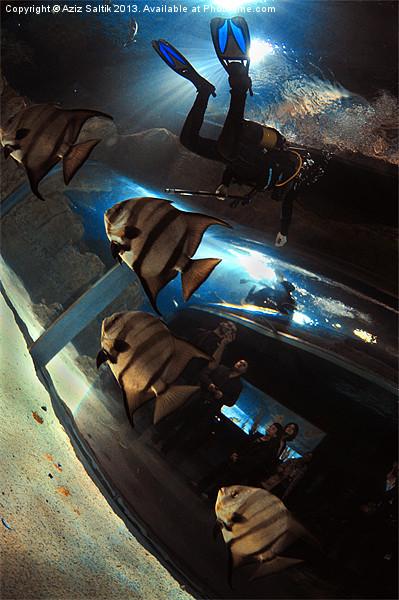 Aquarium Canvas print by Aziz Saltik