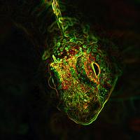 Buy canvas prints of Facing the alien by Aziz Saltik