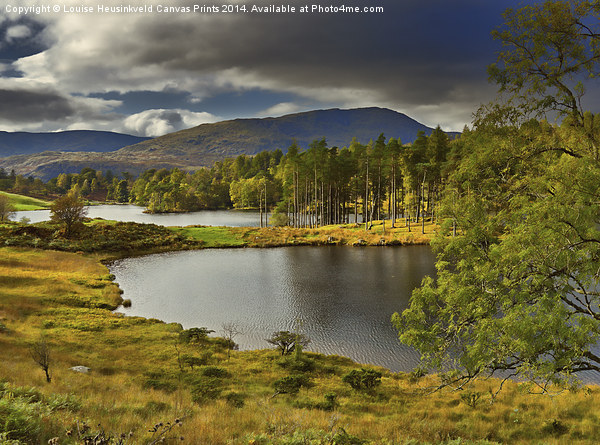 Tarn Hows, Lake District, Cumbria Canvas print by Louise Heusinkveld Canvas Prints