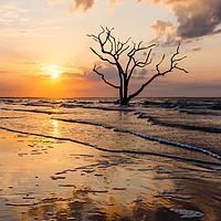 Buy canvas prints of Edisto Island Sunrise II by Clarence Holmes