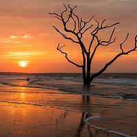 Buy canvas prints of Edisto Island Sunrise III by Clarence Holmes