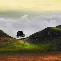 Buy canvas prints of Dawn at sycamore gap by Robert Fielding