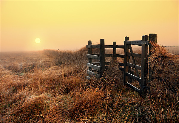 Moorland sunrise Canvas print by Robert Fielding