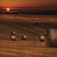Buy canvas prints of Harvest sunset by Robert Fielding