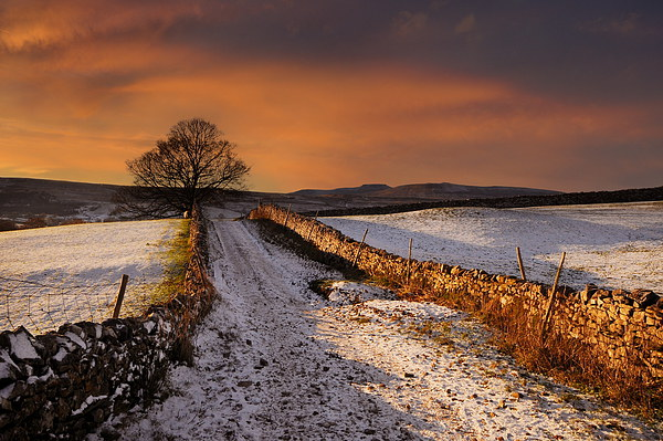 A dales way Canvas print by Robert Fielding
