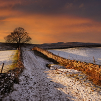 Buy canvas prints of A dales way by Robert Fielding