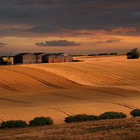 Buy canvas prints of last light over the wheat fields by Robert Fielding