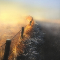 Buy canvas prints of Moorland mists by Robert Fielding