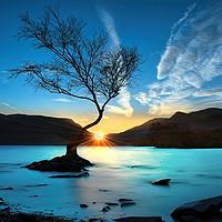 Buy canvas prints of Lynn Padarn lone tree by Robert Fielding