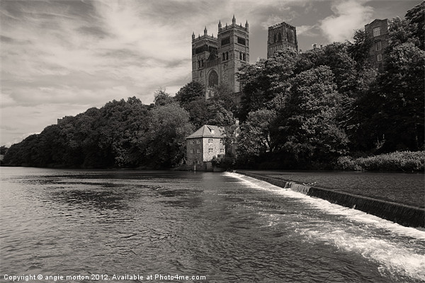 Durham Cathedral and the Mill Canvas print by Angie Morton