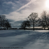 Buy canvas prints of Winter Shadow by Angie Morton
