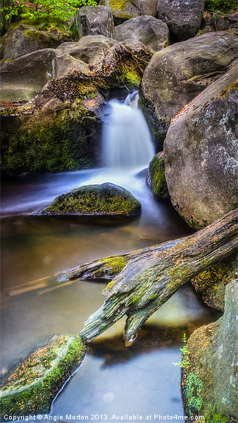Burbage Brook Reworked Canvas print by Angie Morton