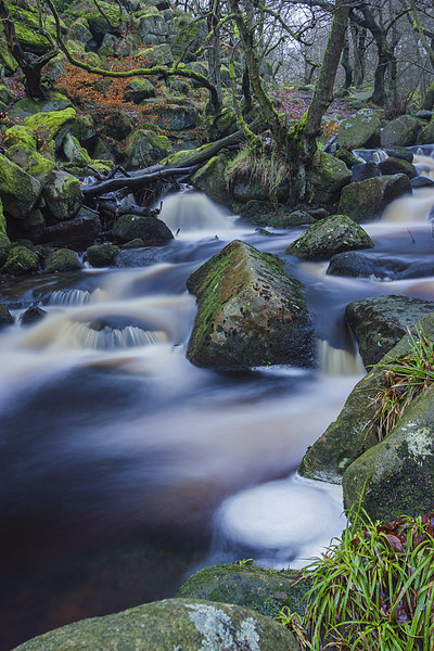 Mystical Burbage Brook Canvas Print by Angie Morton