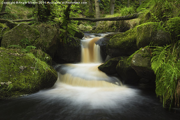 Burbage Brook Cascade Canvas print by Angie Morton