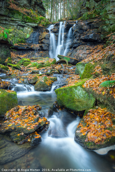 Autumnal Wharnley Burn Waterfall  Canvas Print by Angie Morton