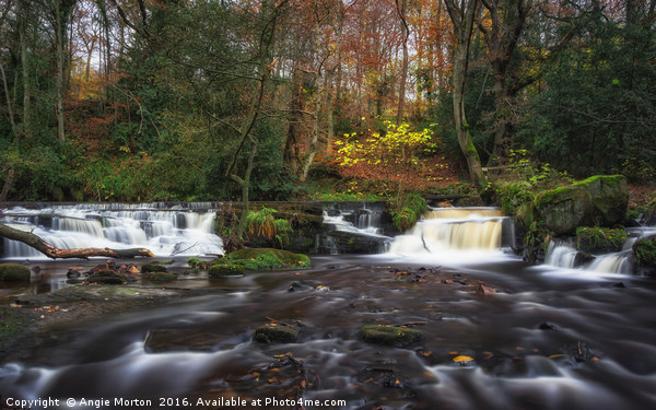 Rivelin Falls in Autumn Canvas Print by Angie Morton