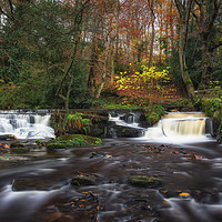 Buy canvas prints of Rivelin Falls in Autumn by Angie Morton