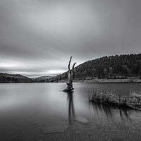Buy canvas prints of Derwent Reservoir in Mono by Angie Morton
