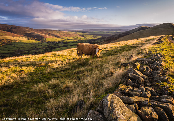 Vale of Edale Canvas print by Angie Morton