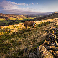 Buy canvas prints of Vale of Edale by Angie Morton